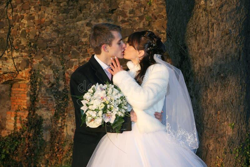 amore di bacio immagini stock libere da diritti