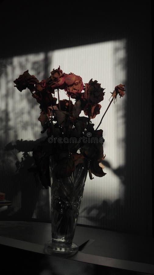 Amore oscuro fotografie stock libere da diritti