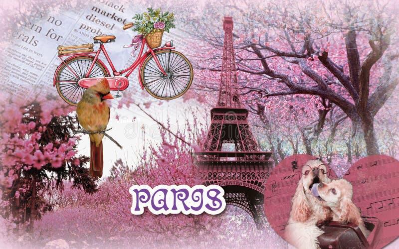Amore romanstic rosa adorabile di Parigi fotografie stock libere da diritti