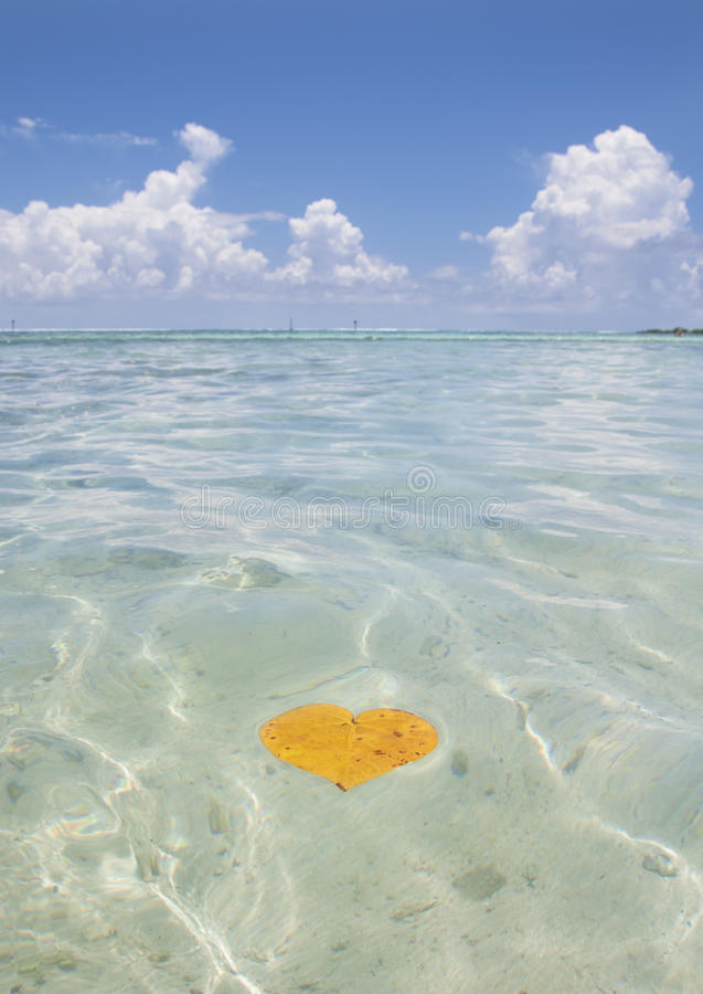 Amore in Tahiti fotografia stock
