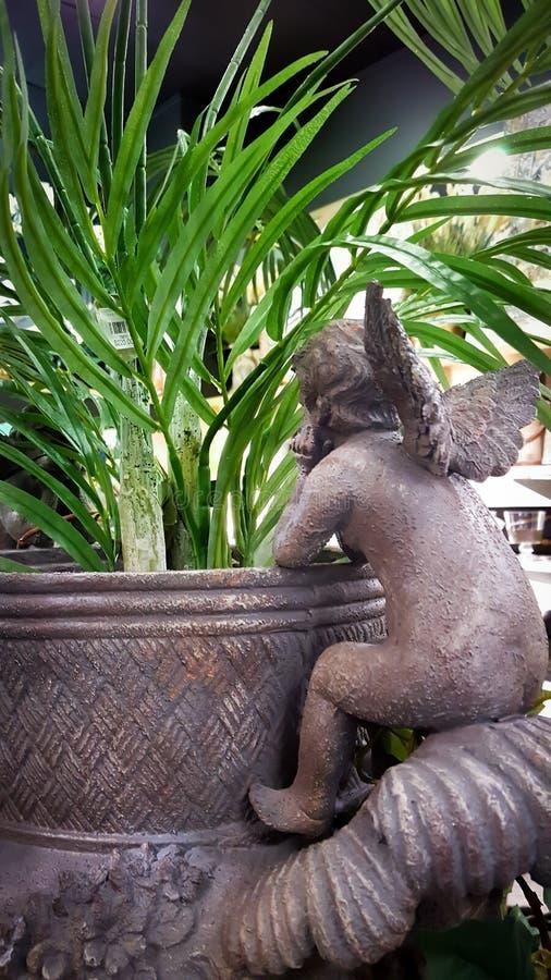 Amorka lub dziecka anioł odpoczywa na krawędzi plantator z rośliną obraz royalty free