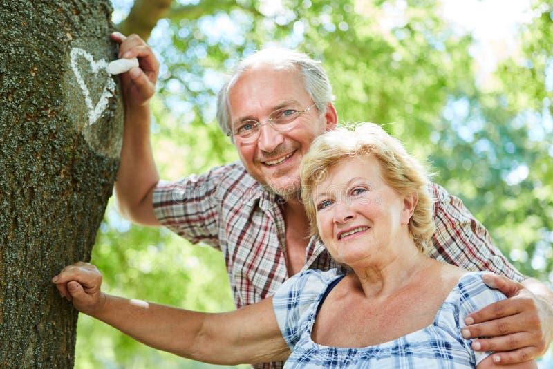 Amorous couple of seniors paints heart to tree stock image