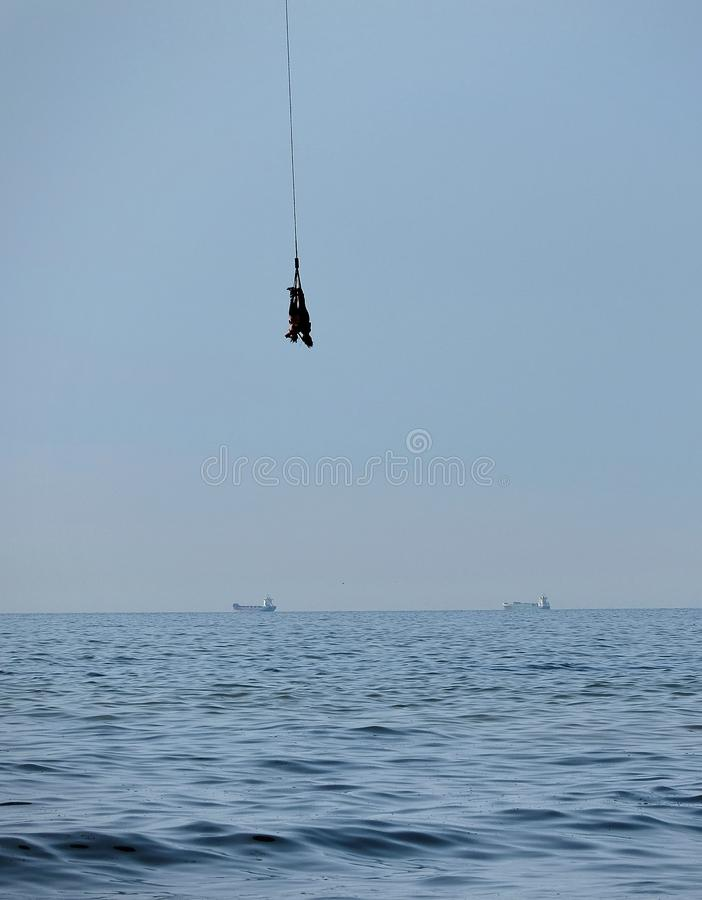Amortiguador auxiliar en tándem de dos personas que salta junto sobre el mar fotos de archivo