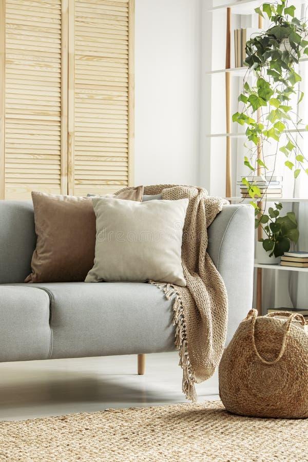 Amortiguadores beige en el sofá gris en sala de estar neutral foto de archivo libre de regalías