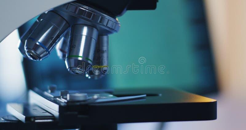 A amostra das bact?rias examinou com microsc?pio foto de stock royalty free
