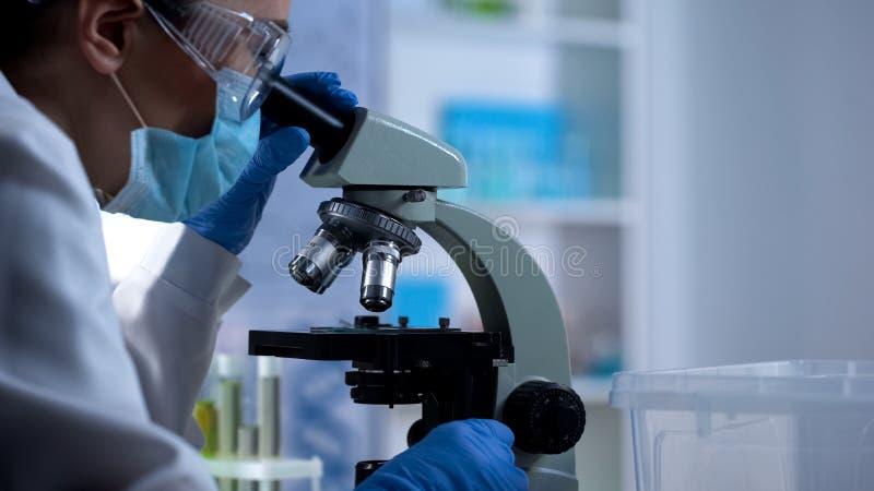 Amostra de exame do teste do técnico de laboratório com o desenvolvimento novo da medicina do microscópio imagem de stock royalty free