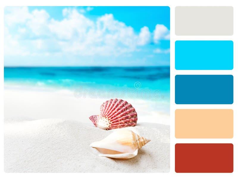 Amostra de folha da paleta de cor imagem de stock