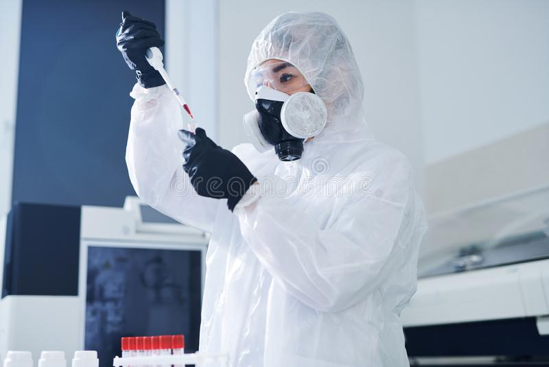 Amostra de teste concentrada do vírus do cientista dos cuidados médicos foto de stock royalty free
