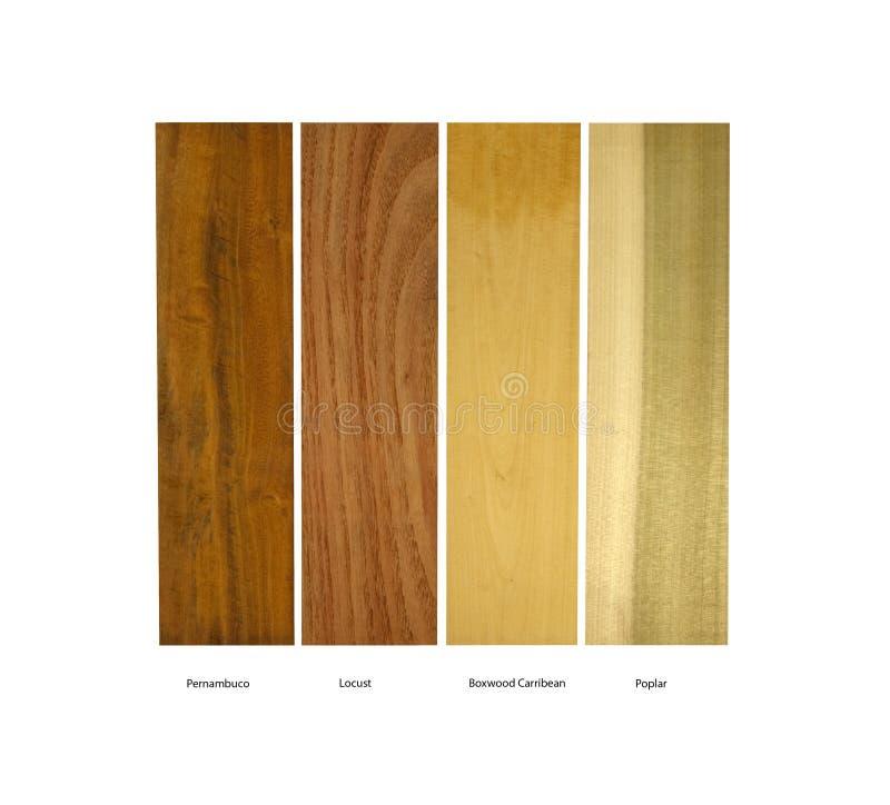 Amostras da madeira de Pernambuco, de locustídeo, de buxo e de álamo fotografia de stock