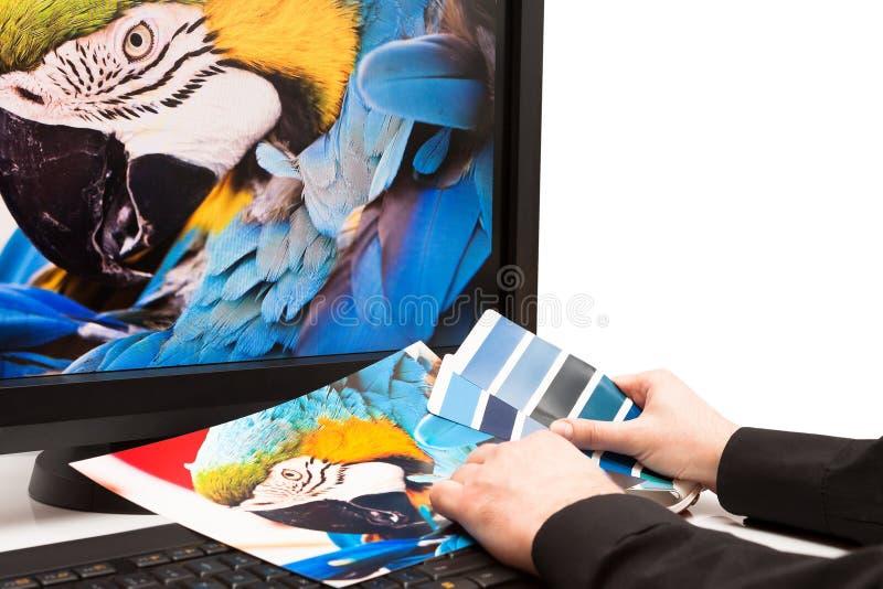 Amostras de folha da cor e teclado de computador, rato imagem de stock royalty free