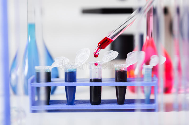 Amostras de sangue para a pesquisa nos microtubes fotos de stock royalty free