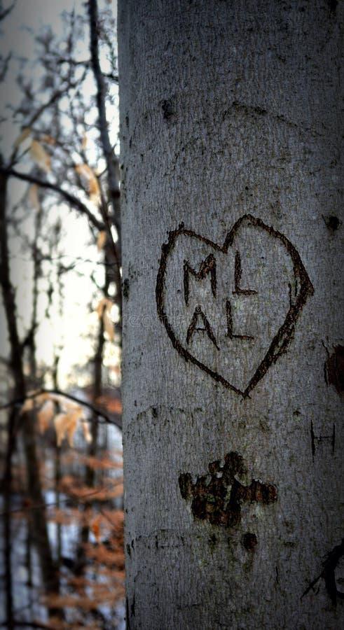 Amour découpé photos libres de droits
