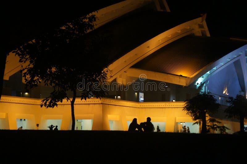 Amour dans la nuit 1 image stock