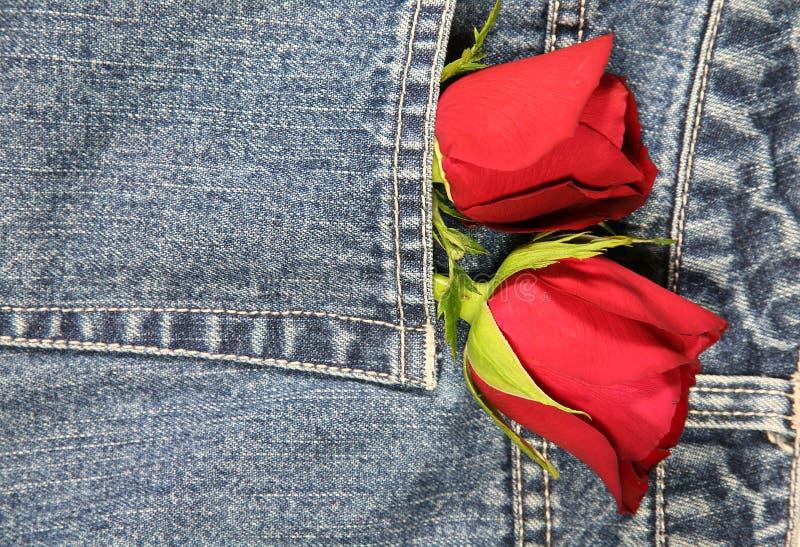 Amour dans ma poche (verticale) photo stock