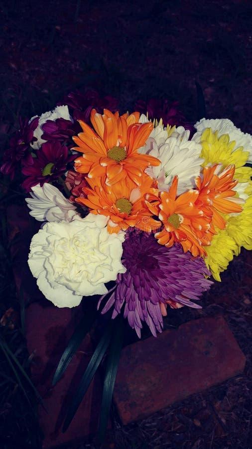 Amour de fleur photos stock