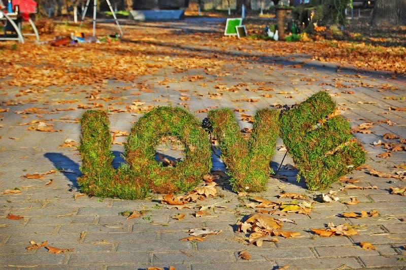 AMOUR de mots sur le fond d'automne photos stock