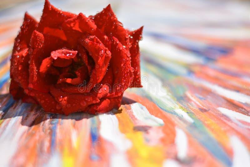 amour, il vit avec des couleurs lumineuses images libres de droits
