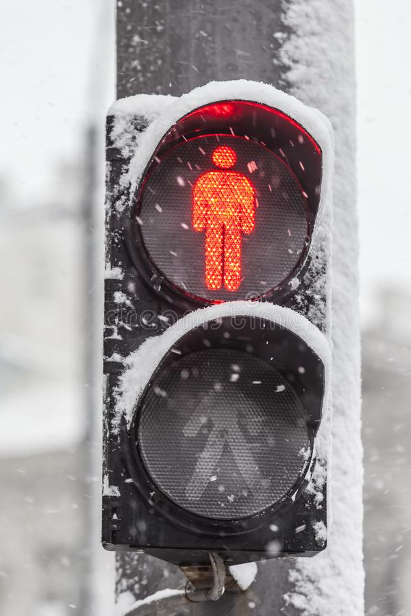 Ampel im Schnee lizenzfreies stockbild