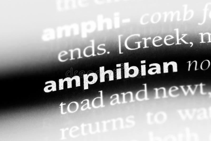 amphibie photos stock