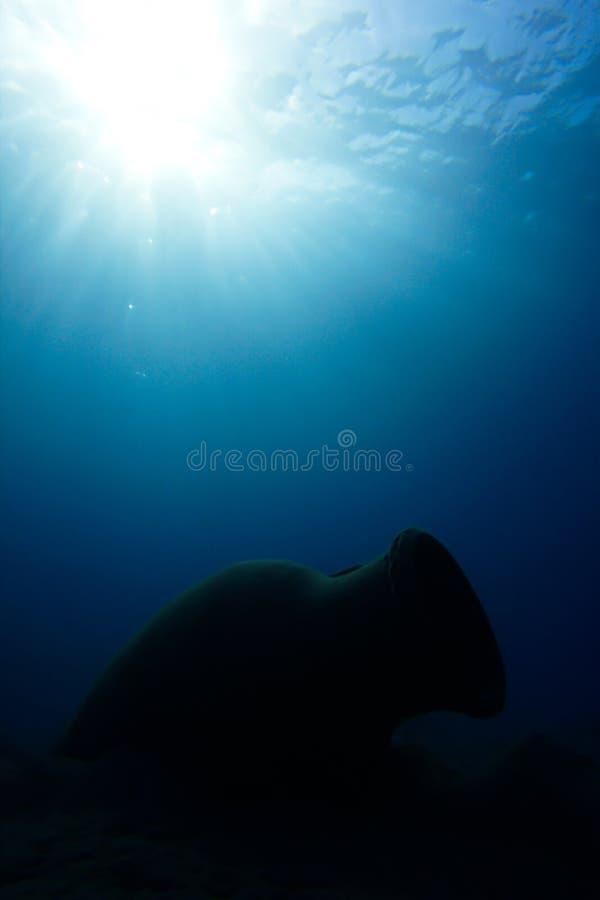 amphibious royaltyfria foton
