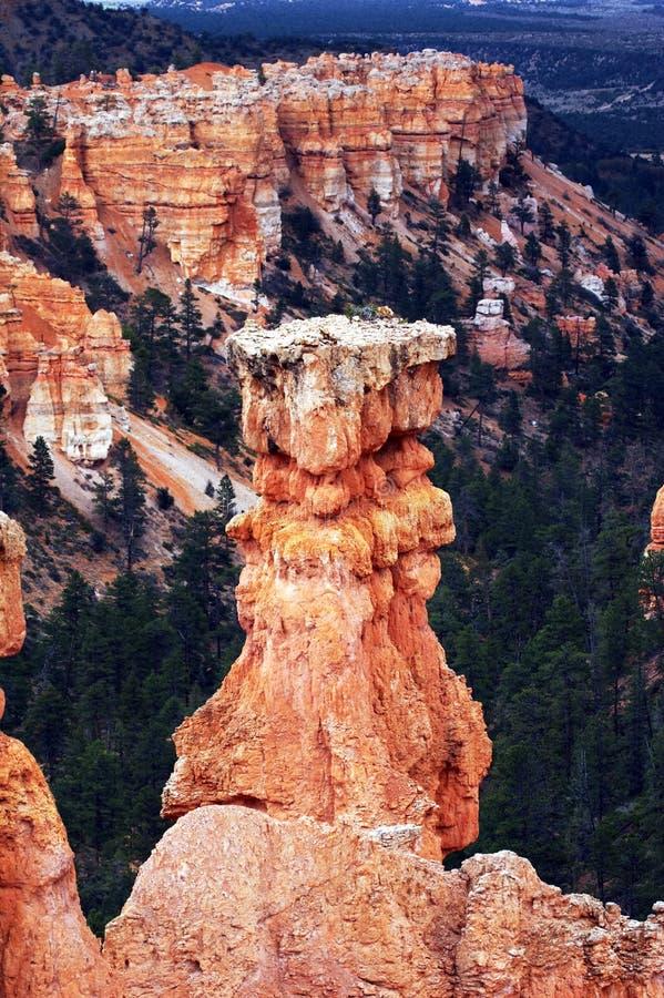Amphitheater - Bryce Canyon stock photo