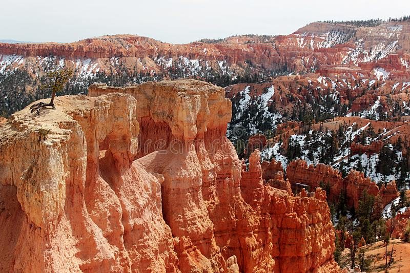 Amphitheatre in Bryce Canyon National Park, Utah stock images