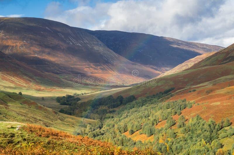 Ampia vista in Glen Roy negli altopiani della Scozia fotografia stock