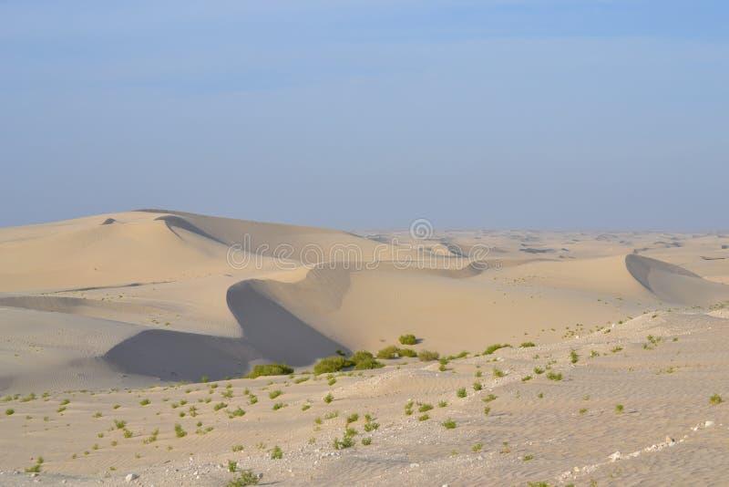 Ampio deserto fotografie stock