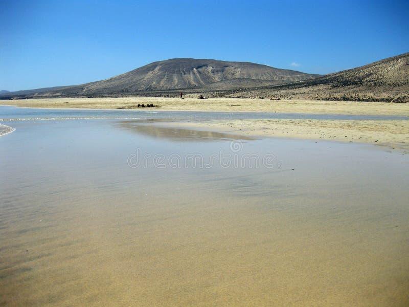 Ampio tideland senza fine nella laguna di Gorriones, Playa de Sotavento, calma della Costa, Fuerteventura, Spagna fotografia stock