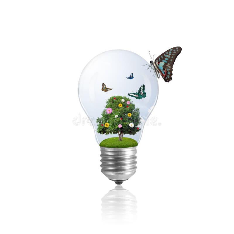 Ampola com árvore e borboleta imagens de stock royalty free