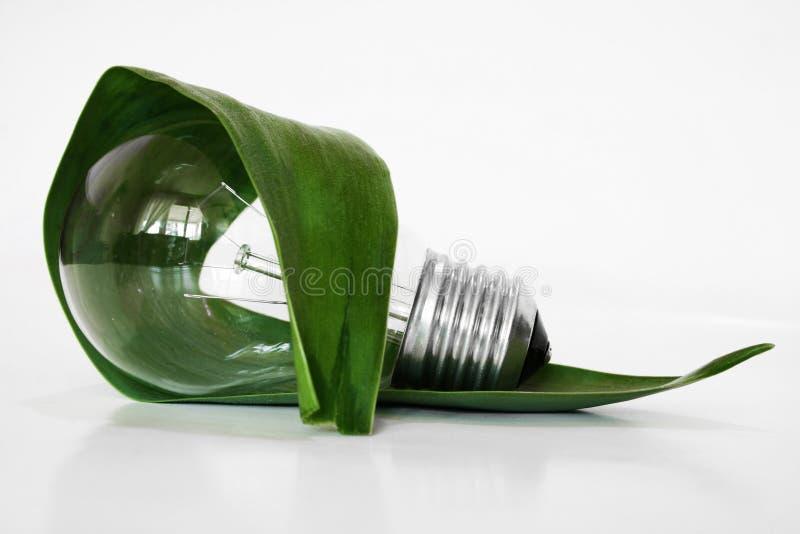 Ampola de Eco fotos de stock