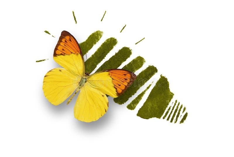 Ampola de poupança de energia com borboleta imagens de stock royalty free