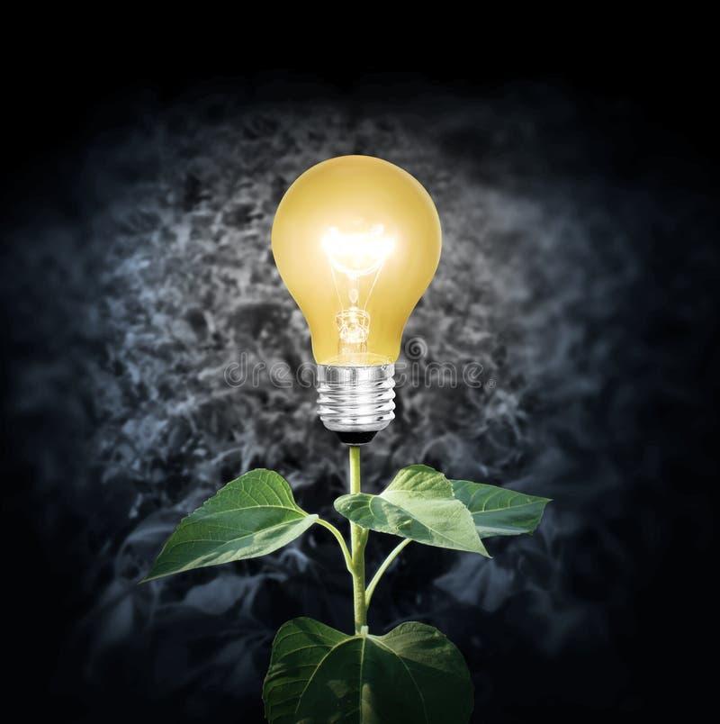 Ampoule avec l'usine comme filament illustration de vecteur