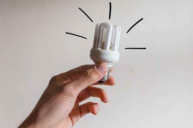 Ampoule d'eco sûr d'énergie photographie stock libre de droits