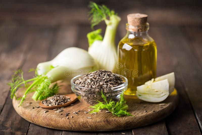 Ampoule de fenouil, huile essentielle et graines photographie stock libre de droits