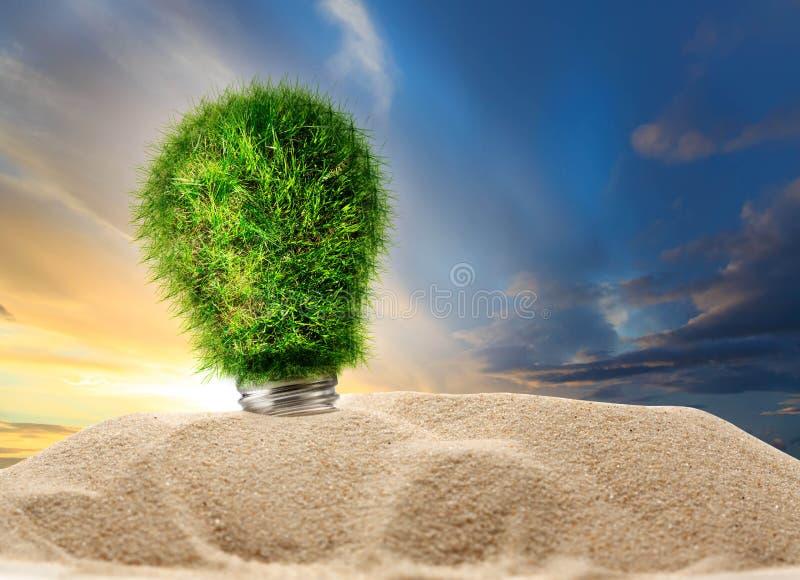 Download Ampoule De Lampe Faite En Herbe Verte Image stock - Image du normal, innovation: 76076639