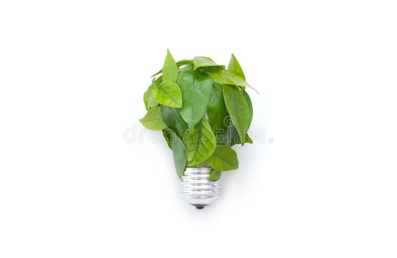Ampoule faite de feuilles vertes illustration de vecteur