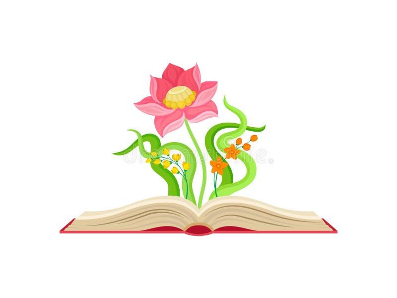 Ampu? menchii kwiat obok ma?ej pomara?cze kwitnie i kolor ? ilustracji