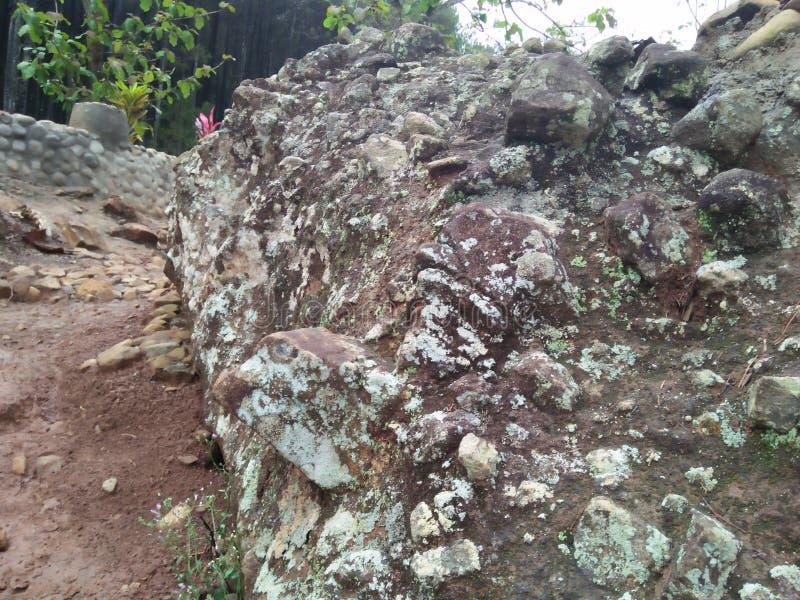 Ampuł skały wietrzeć blisko lasu zdjęcia stock