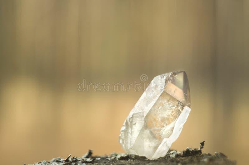 Ampuła rozjaśnia czystego przejrzystego wielkiego królewskiego kryształ kwarcowego chalcedonu diamentowy brylant na natura zamazu obraz stock