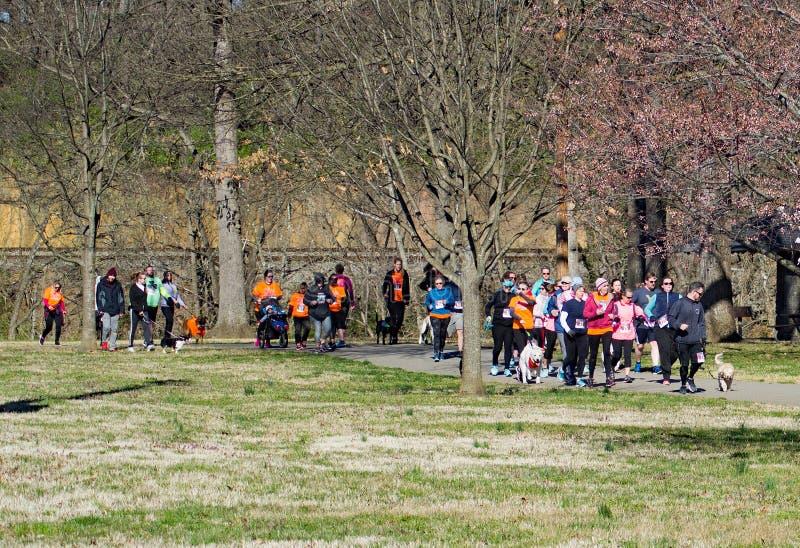 Ampuły grupa biegacze i Ich zwierzęta domowe przy rocznym Roanoke doliny SPCA 5K ogonu łowcą obraz royalty free