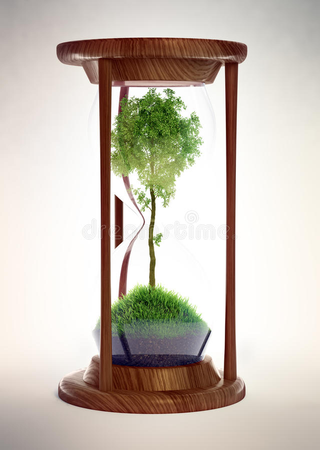 Ampulheta com uma árvore para dentro ilustração do vetor