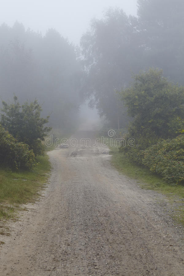 Amrum (Allemagne) - chemin au brouillard photos libres de droits