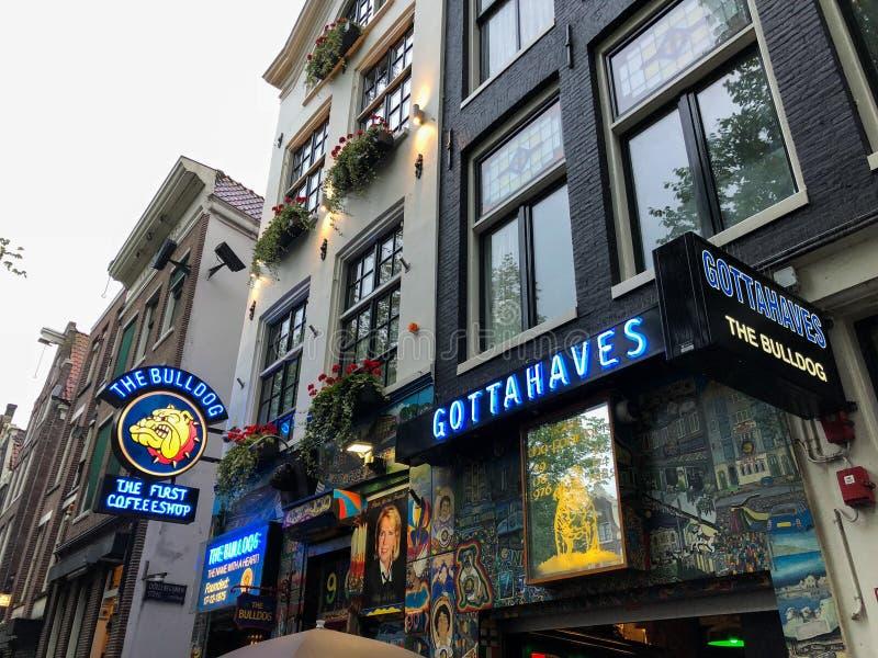 AMSTERDÃO, PAÍSES BAIXOS - 20 DE AGOSTO DE 2018: O coffeeshop do buldogue em Amsterdão abaixo da cidade fotos de stock