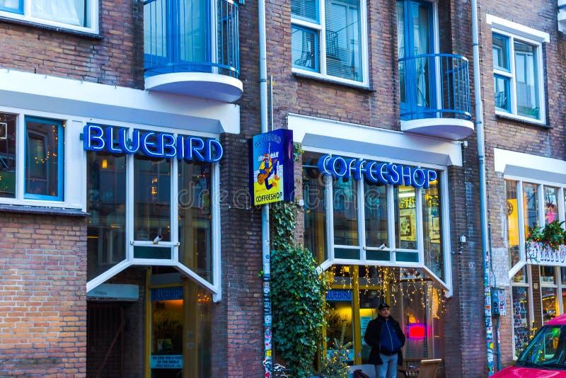 Amsterdão, Países Baixos - 14 de dezembro de 2017: O sinal de néon azul da cafetaria foto de stock