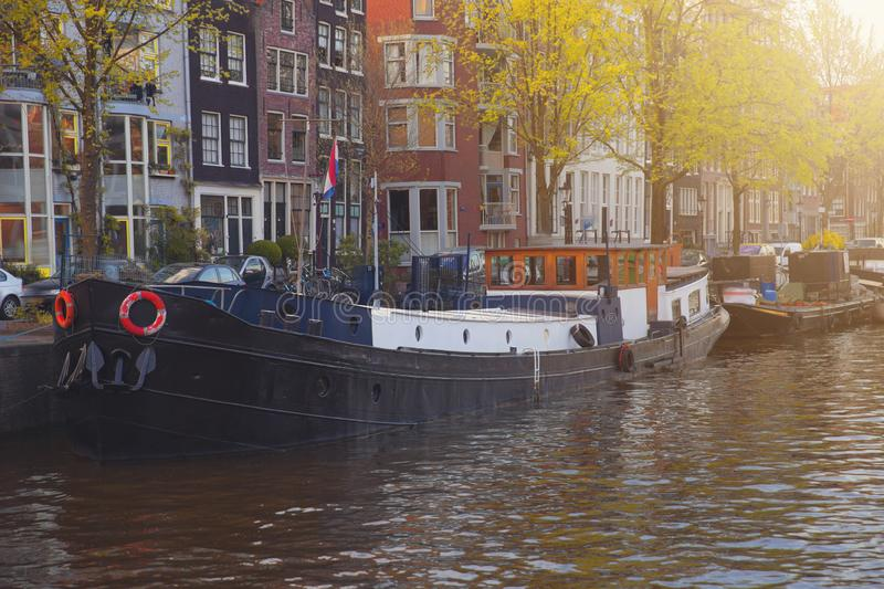 Amsterdam is autumn. Yellow trees among streets and canals stock image
