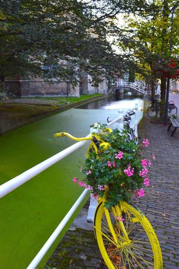 amsterdam bicykl zdjęcia royalty free