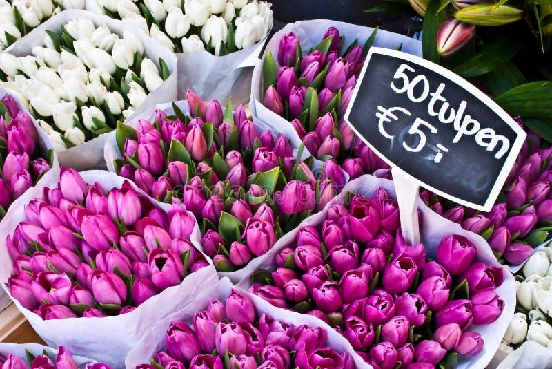 amsterdam blommar marknaden royaltyfria bilder