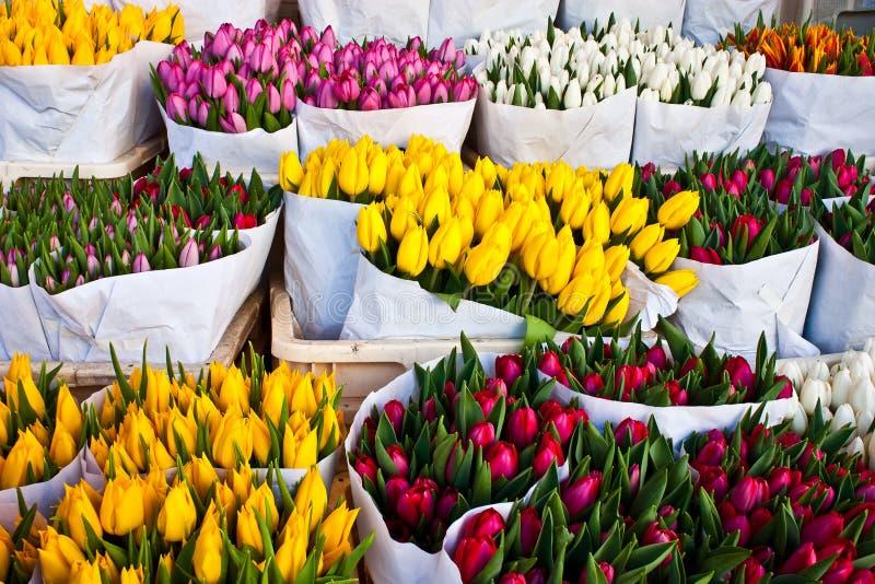 amsterdam blommar marknaden royaltyfri foto