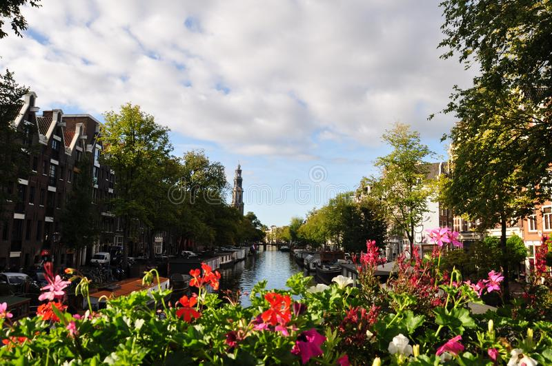Amsterdam canal and colourful flowers royalty free stock photography